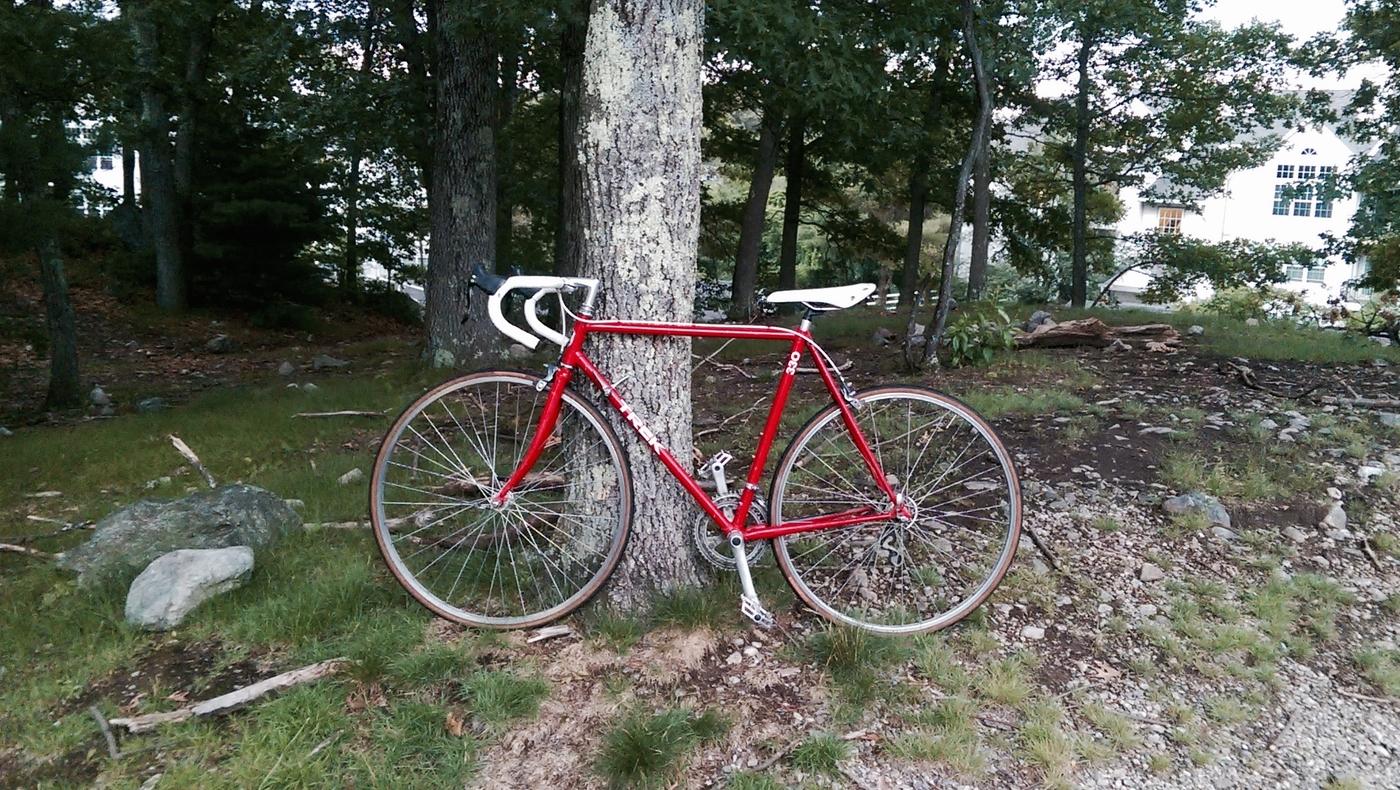 Hugh`s bicycle blog: Assessing The Trek 330 For Light Restoration ...